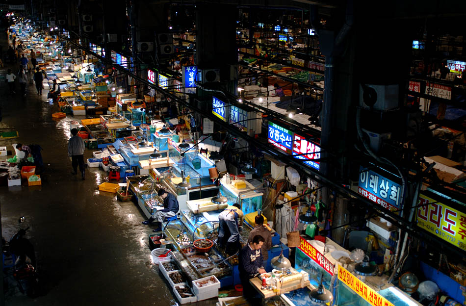 Album,Korea,Seoul,Noryangin,Fisheries,Makret,Market,shafir,photo,image