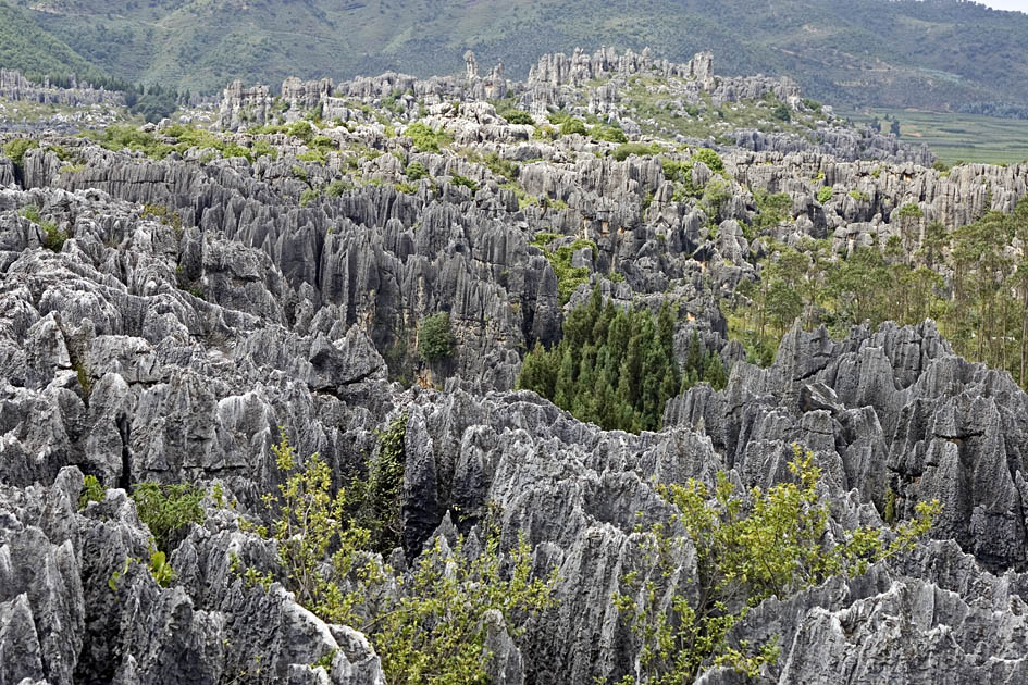 Album,China,Yunnan,Stone,Forest,Stone,Forest,25,shafir,photo,image