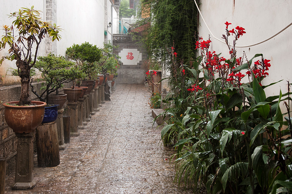 Album,China,Yunnan,Lijiang,Rain,4,shafir,photo,image