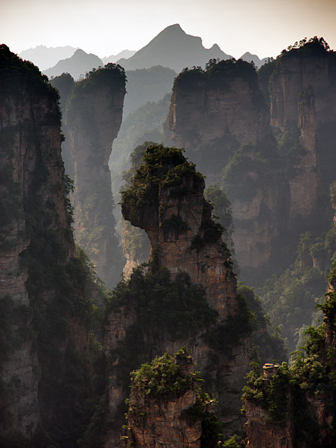 Album,China,Zhangjiajie,Zhangjiajie,National,Forest,Park,3,shafir,photo,image
