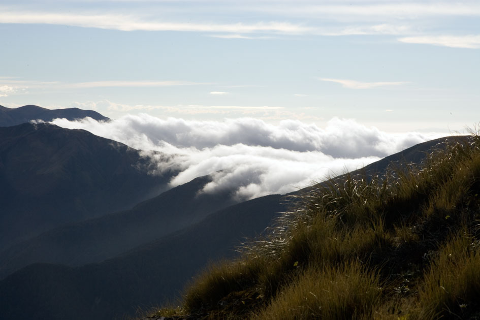 Album,New,Zealand,Tramping,Tararua,Ridge,shafir,photo,image