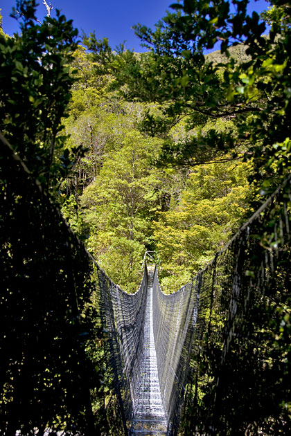 Album,New,Zealand,Tramping,Tararua,Bridge,shafir,photo,image
