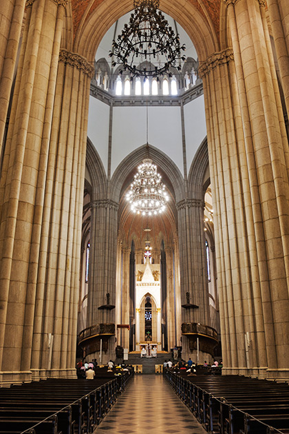Album,Brazil,San,Paolo,Sao,Paulo,Cathedral,3,shafir,photo,image