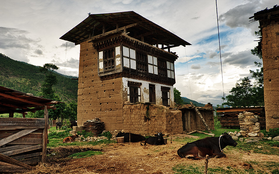 Album,Bhutan,Punakha,Traditional,Houses,1,shafir,photo,image