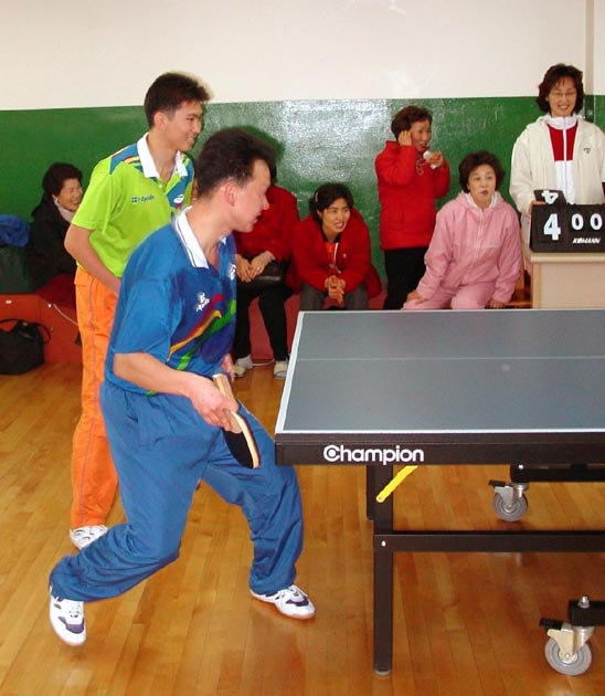Journal,Korea,Table,Tennis,Kangnam,Club,Opening,Game,4,shafir,photo,image