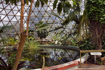 Album / Australia / Brisbane / Mt Coot-tha / Tropical Display Dome