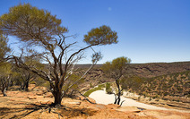 Album / Australia / Kalbarri National Park / The Loop 1