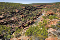 Album / Australia / Kalbarri National Park / Z-Bend Gorge 2