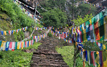 Album / Bhutan / Hike to the Tiger's Nest / Hike to the Tiger's Nest 10
