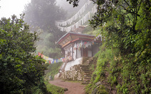 Album / Bhutan / Hike to the Tiger's Nest / Hike to the Tiger's Nest 7
