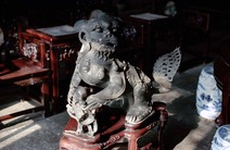 Album / China / Suzhou / Lion