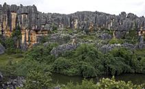 Album / China / Yunnan / Stone Forest / Stone Forest 23