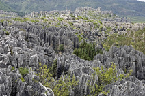 Album / China / Yunnan / Stone Forest / Stone Forest 25