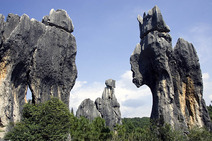 Album / China / Yunnan / Stone Forest / Stone Forest 6