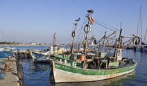 Album / Israel / Old Acre / Fishermen's Harbor