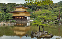 Album / Japan / Kyoto / Golden Pavilion / Golden Pavilion Temple 1
