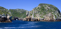 Album / New Zealand / Poor Knights Islands / Islands 1