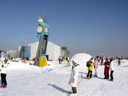 Journal / Korea / Hyundai Sungwoo ski resort / sungwoo 2