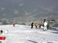 Journal / Korea / Hyundai Sungwoo ski resort / sungwoo 3