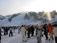 Journal / Korea / Hyundai Sungwoo ski resort / sungwoo 4