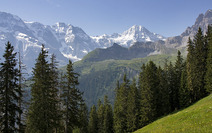 Album / Switzerland / Alpine Pass Route / Murren 2