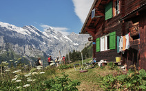 Album / Switzerland / Alpine Pass Route / Murren 3