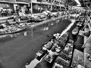 Album / Thailand / Ratchaburi / Floating Market / Floating Market 8