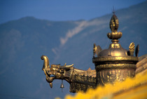 Album / Tibet / Lhasa / Potala / Roof 1
