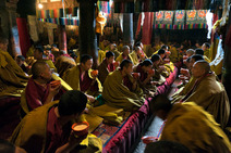 Album / Tibet / Shigatse / Tashilhunpo Monastery / The Main Chanting Hall / The Main Chanting Hall 16