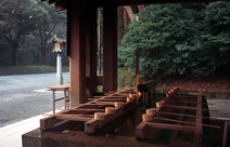 Journal / Japan / Tokyo / Meiji Shrine / Purification fountain