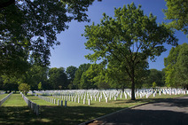 Album / USA / Washington DC / Arlington National Cemetery