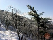 Journal / Korea / YongPyong Ski Resort / YongPyong 6